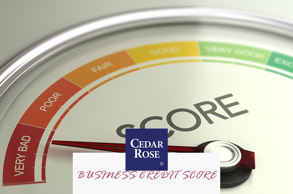How to Boost Your Business Credit Score In 5 Easy Steps