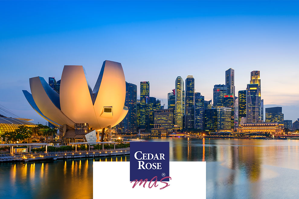 Monetary Authority of Singapore (MAS) Offers S$35 Million Grant for Regtech Adoption