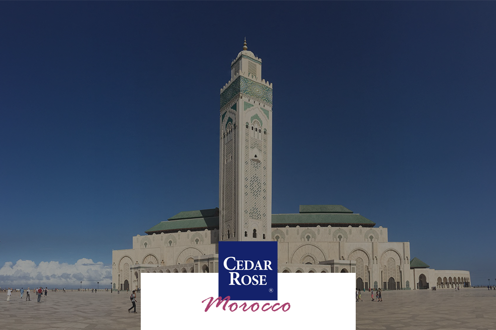 Hub for Foreign Investment - Moroccan Business Opportunities