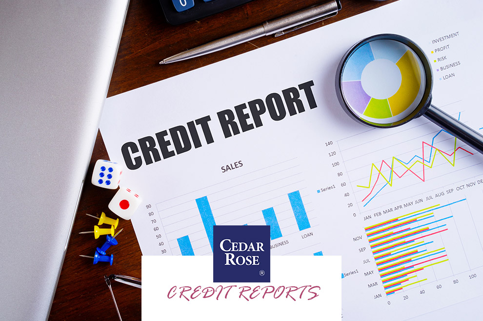 Company Credit Reports: How can they help your business grow?
