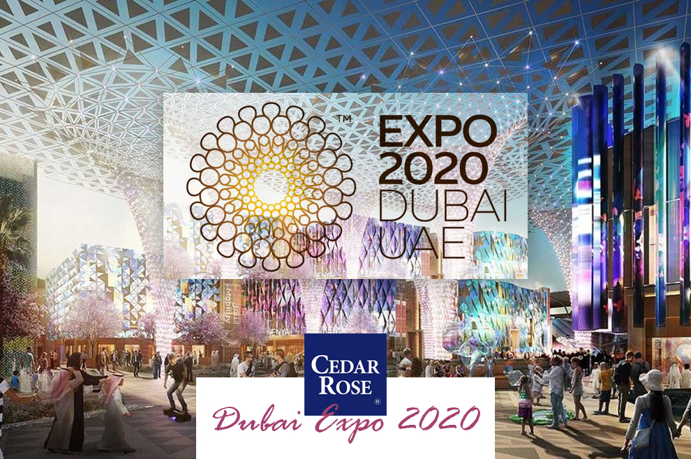 2020 Dubai Expo: Everything we Know #expo2020
