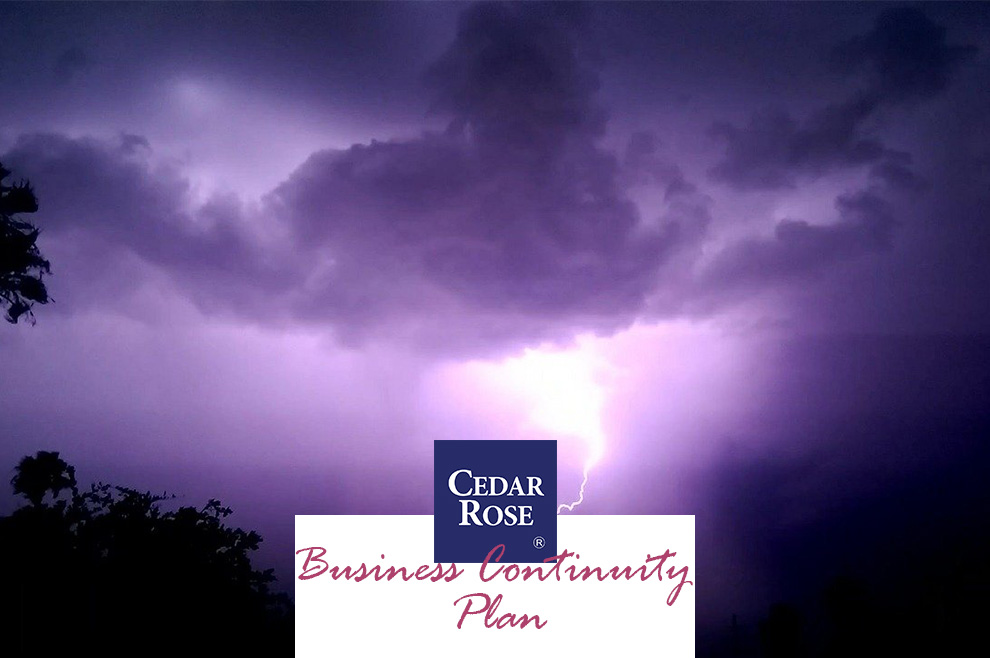 How to Prepare for Business Disasters – A Business Continuity Plan